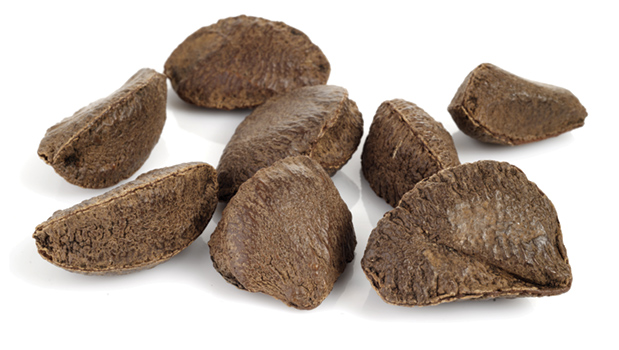 Brazil nuts in shell.