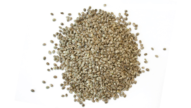 Toasted hemp seeds.
