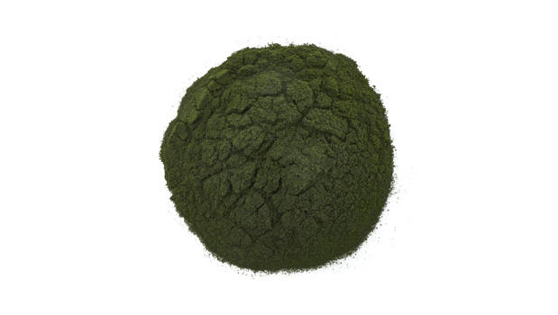 Chlorella powder.