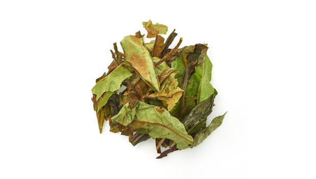Organic white tea bai mu dan whole.