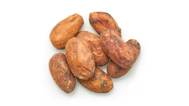 Organic cocoa beans.